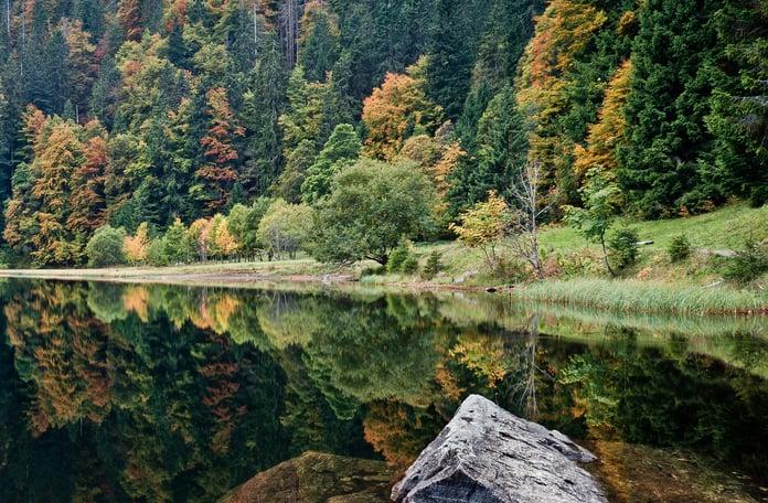 Floresta Negra na Alemanha