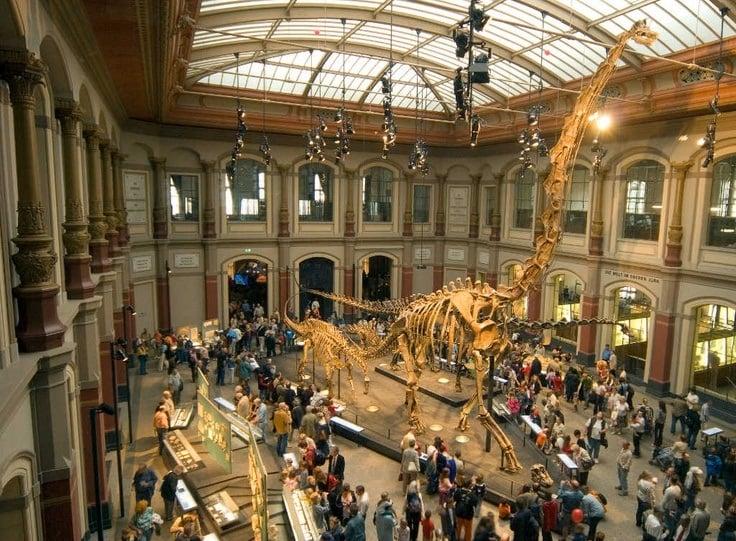 Museum füer Naturkunde em Berlim